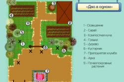 Схема планировки сада «Два в одном»