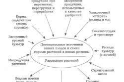 Схема происхождения сорняков