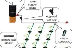 Создание системы капельного полива