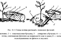 Пример простой системы капельного полива