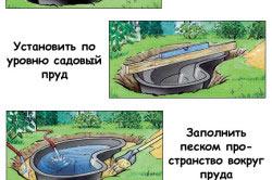 Этапы установки емкости для пруда