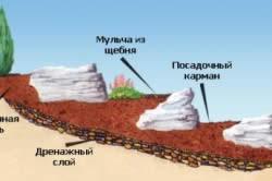 Схема альпийской горки своими руками
