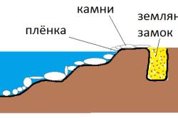 Схема пленочного пруда