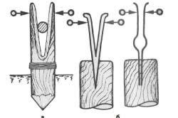 Виды щемилок для снятия коры