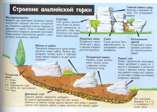 Альпийская горка своими руками пошаговое фото схема