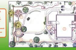 План-схема сада