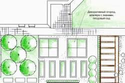 План участка с декоративным огородом