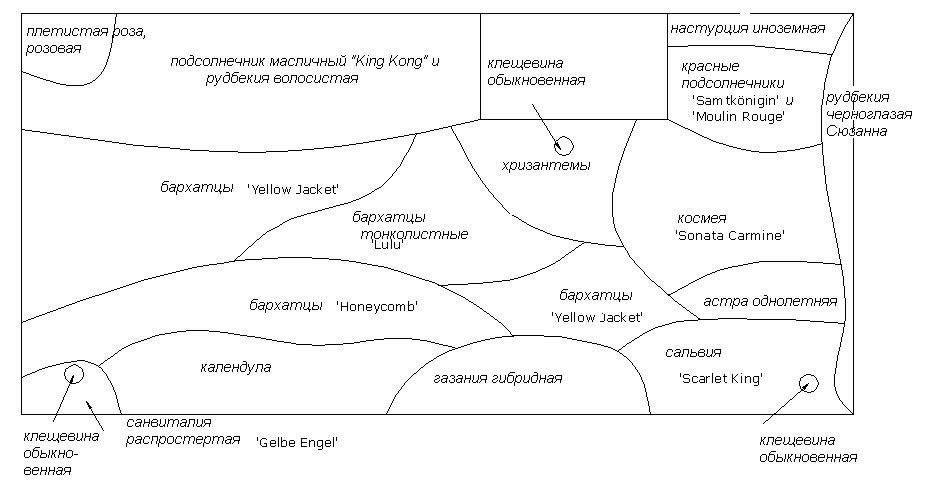 Пример схемы оформления палисадника