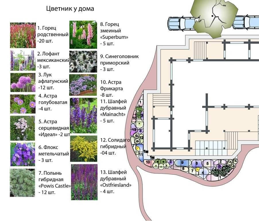 Разнообразие клумб и цветников