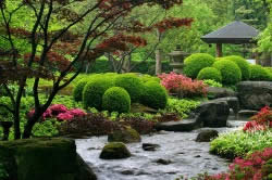 Сад в окружении камней