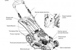 Схема устройства бензиновой газонокосилки