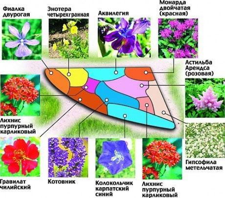 Схема дачного цветника своими руками
