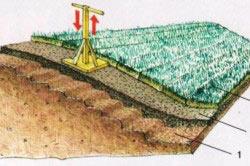 Схема газонирования склона одерновкой