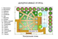 Схема планировки декоративного огорода