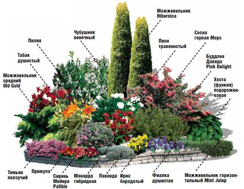 Как сделать клумбу для цветника