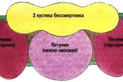 Схема посадки палисадника