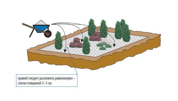 Схема посадки растений.