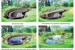 Схема постройки дачного пруда