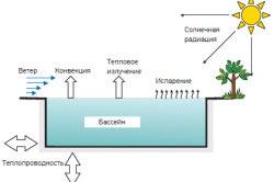 Схема распределения тепловых потерь открытого бассейна