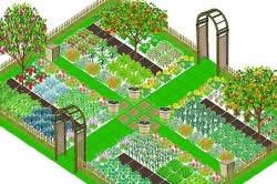 Схема посадки овощей на огороде