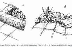 Схема травяных бордюров