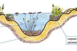 Схема украшения пруда