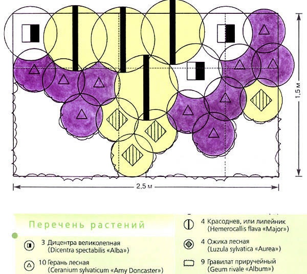Схема весеннего цветника