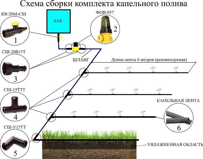 Схема устройства газона.