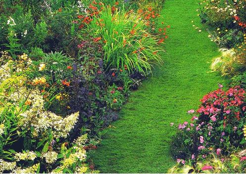 Миксбордеры представляют собой цветочные бордюры.