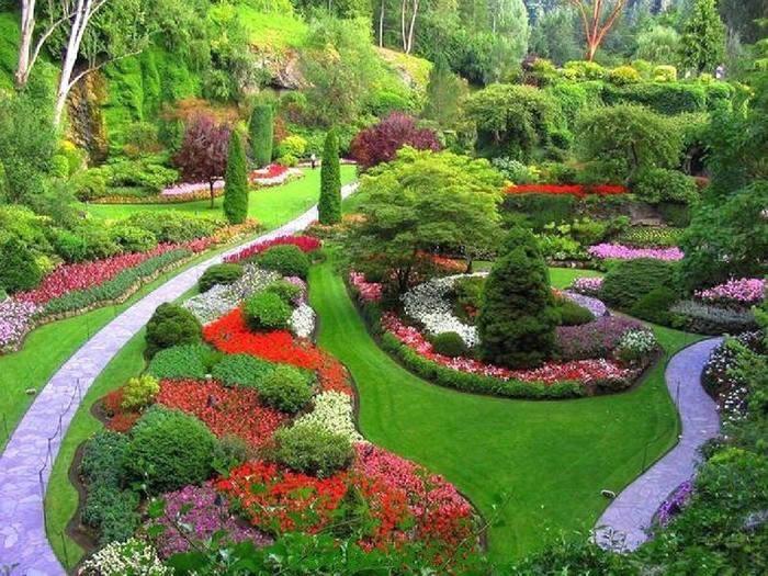Что может быть прекрасней участка, засаженного цветами. Они создают  неповторимо яркий и красочный пейзаж.