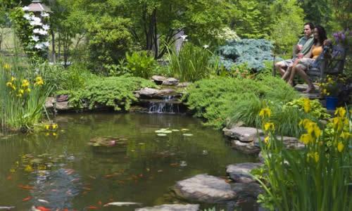 Небольшой пруд на загородном участке