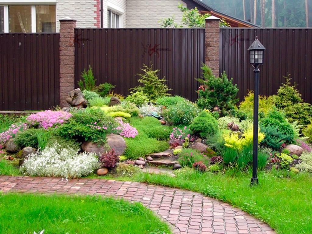 Ваш сад какие растения посадить