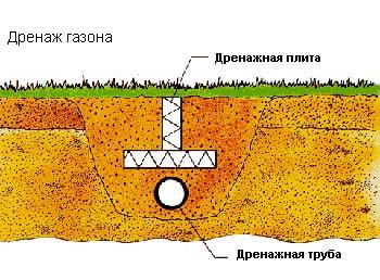 Дренаж газона