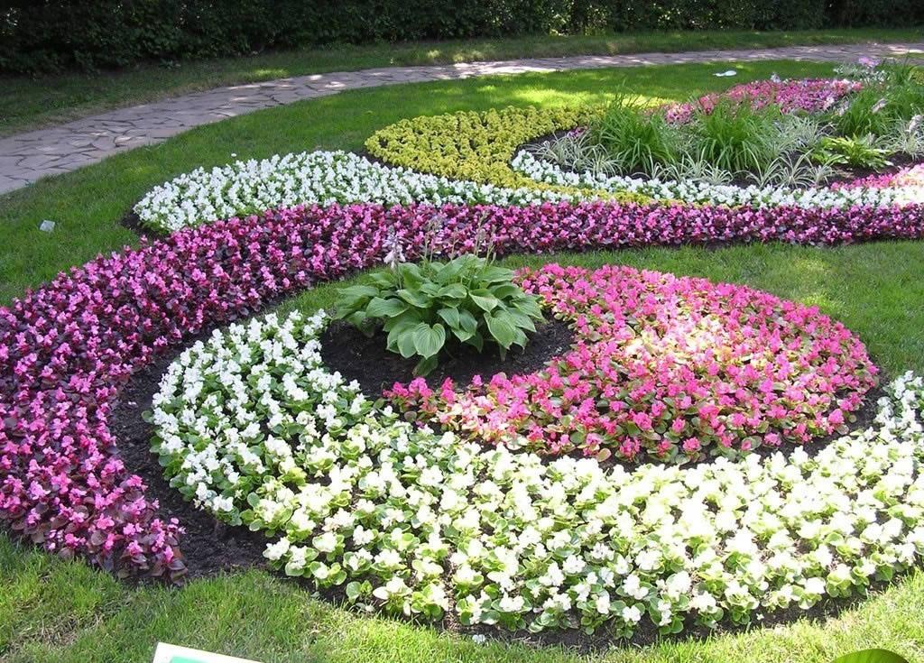 Как оформить квадратную клумбу цветами