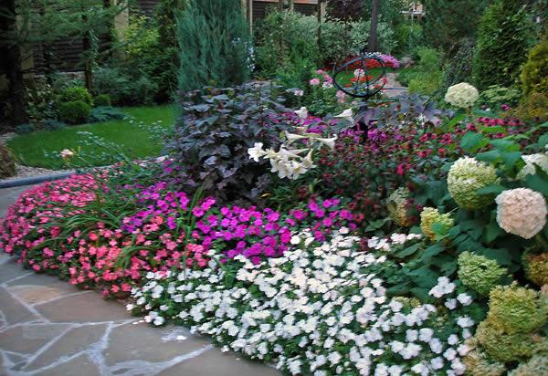 Цветов кустарников и деревьев
