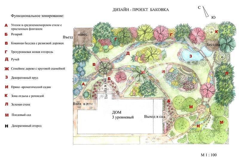 Проект рассадки растений на участке