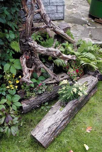 Рутарий - как сделать сад корней своими руками