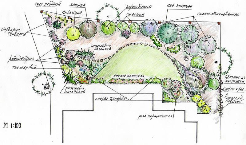 Примерная схема - проект сада на участке
