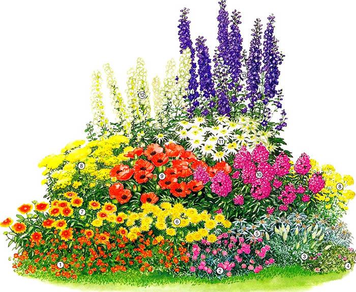 Схема садовой клумбы: 1