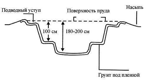 Схема искусственного пруда.
