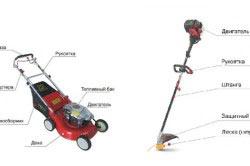 Виды устройств для кошения травы: газонокосилка, триммер