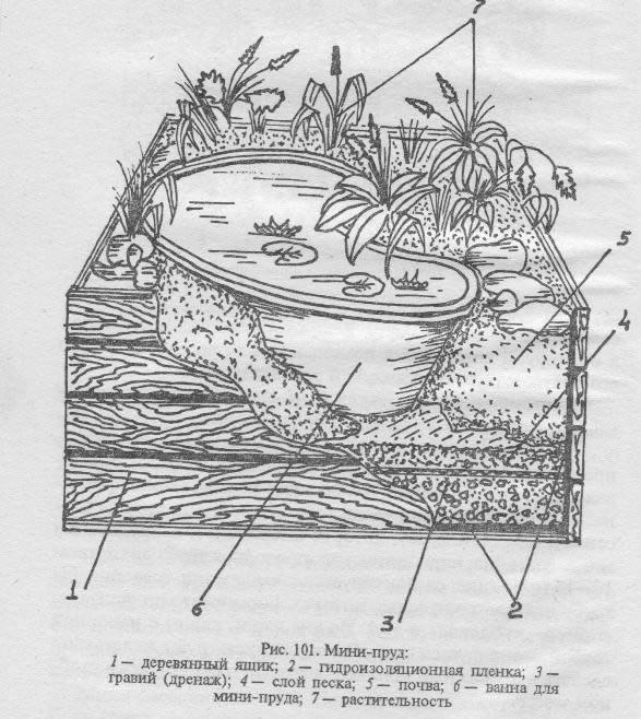 Схема устройства мини пруда
