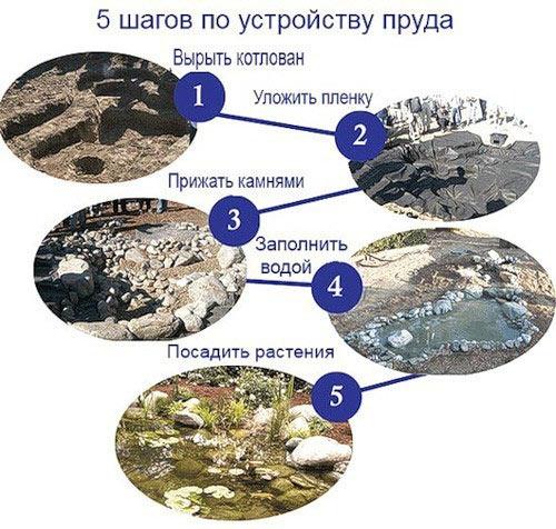 Схема выполнения работ по устройству пруда