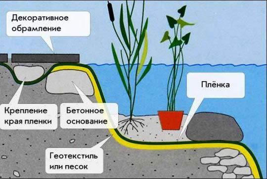 Схема устройства пруда.