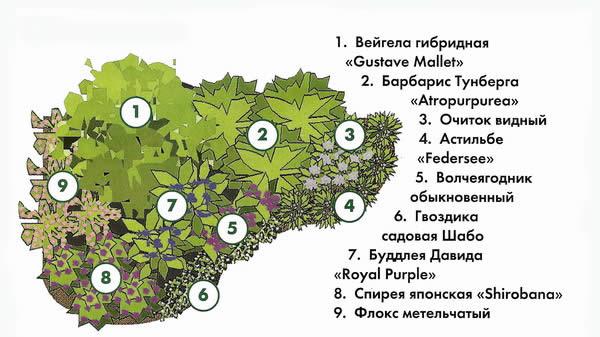 Схема цветника для сада.