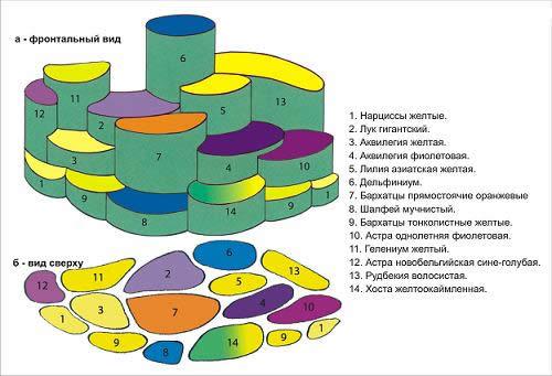 Схема цветника-миксбордера