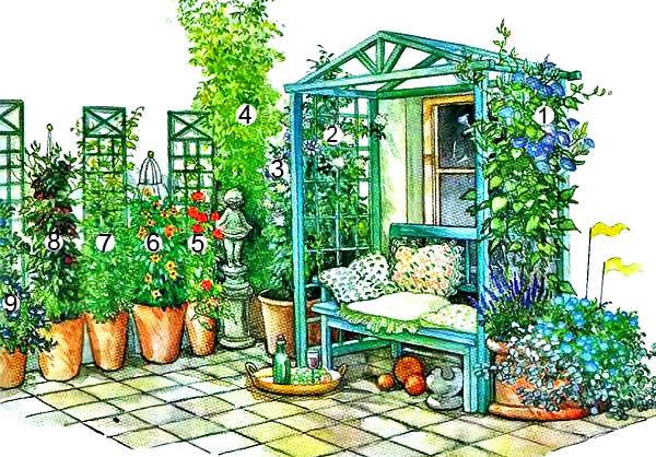 Схема озеленения двора