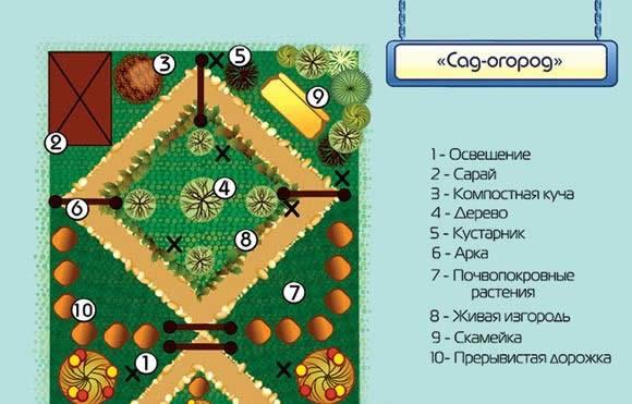 Схема планировки сада-огорода