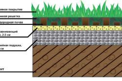 Схема посадки травы