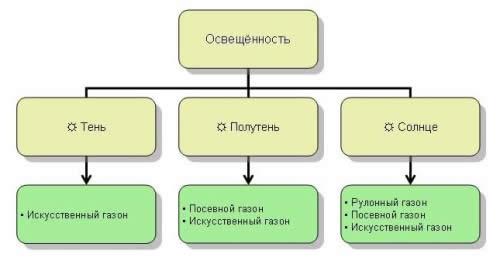 Схема выбора типа газона
